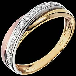 <a href=http://es.edenly.com/joyas/sortija-trilocura-13-diamantes-oros,1220.html><span class='nom-prod-slide'>Anillo Saturno diamante - 3 oros - 18 quilates</span> <br><span class='prixf'>590 &#x20AC;</span> (-41%)</a>