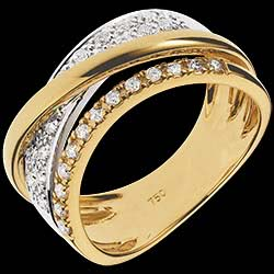 <a href=http://www.edenly.com/bijoux/bague-sublime-saturne,1222.html>Bague Royale Saturne variation - or jaune, or blanc  <br><span class='prixf'>890 &#x20AC;</span> (-51%)</a>