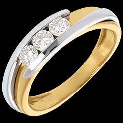 <a href=http://www.edenly.com/bijoux/trilogie-bipolaire-or-jaune-or-blanc-gm-38-carats,66.html>Trilogie Nid Pr�cieux - Bipolaire - or jaune et or blanc - 0.38 carat - 18 carats <br><span  class='prixf'>890 &#x20AC;</span> (-54%) </a>