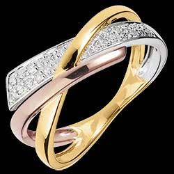 <a href=http://it.edenly.com/gioielli/anello-arte-dell-universo,1180.html>Anello  Piccolo Saturno variazione 2 - 3 ori - 18 carati <br><span class='prixf'>390 &#x20AC;</span> (-49%)</a>