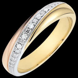<a href=http://www.edenly.com/bijoux/alliances-saturne-trilogie-ors-diamants-carats,3252.html><span class='nom-prod-slide'>Alliances Saturne - Trilogie - 3 ors et diamants - 9 carats</span> <br><span class='prixf'>250 &#x20AC;</span> (-32%)</a>