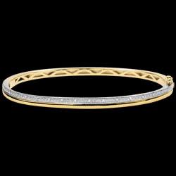 <a href=http://de.edenly.com/schmuck/armreif-eleganz-gelbgold-wei-gold-und-diamanten-18,3516.html>Armreif Eleganz - Gelbgold, Wei�gold und Diamanten - 18 Karat <br><span  class='prixf'>790 &#x20AC;</span> (-63%) </a>