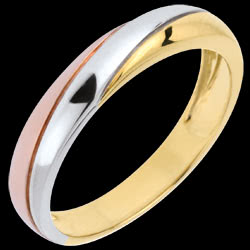 <a href=http://en.edenly.com/jewels/three-golds-timelessness-wedding-ring,623.html>Three Golds Timelessness Wedding Ring   <br><span  class='prixf'>� 249</span> (-49%) </a>