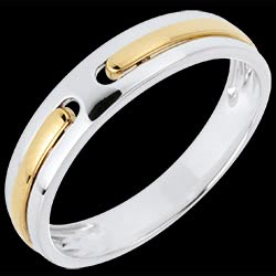 Wedding Ring Promise - all gold - two golds - 18 carat