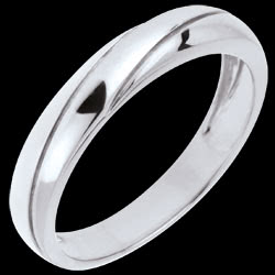 <a href=http://www.edenly.com/bijoux/alliance-eternity-or-blanc,729.html>Alliance Saturne Trilogie - or blanc - 9 carats <br><span class='prixf'>190 &#x20AC;</span> (-24%)</a>